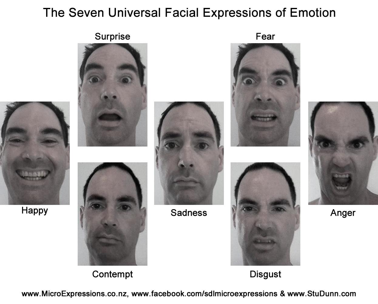 emotii primare