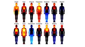 harta emotiilor umane