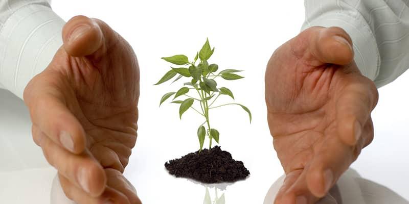Recastigarea increderii si reconstruirea relatiei personale sau profesionale